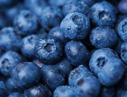 Makanan Berwarna Biru, Manfaat Kesehatan yang Sangat Berguna
